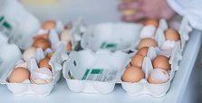 EU eyes new food safety measures after egg scandal