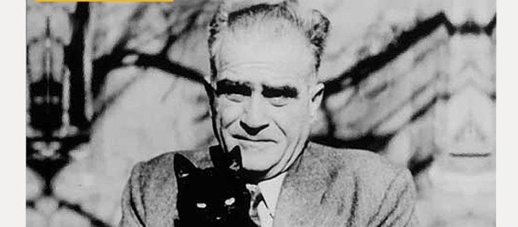 Ahmet Hamdi Tanpınar'ın yaşamına ışık tutan...