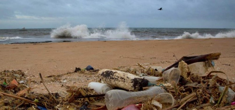 IGNORING OCEANS MAY LEAD TO DAMAGED ECOSYSTEMS, EXPERTS SAY