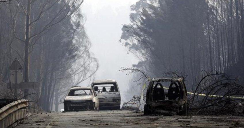 Portekiz'de feci orman yangını: 62 ölü