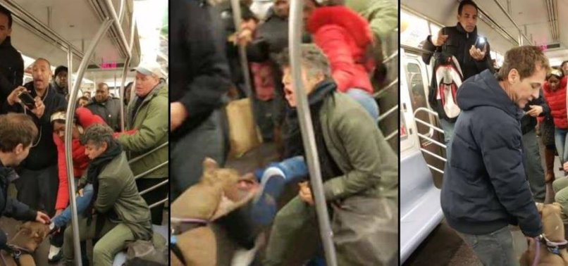 DOG BITES WOMAN DURING ARGUMENT ON NYC SUBWAY
