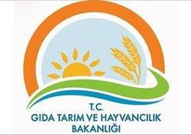 Tarımsal danışmanlıkta destek verilecek