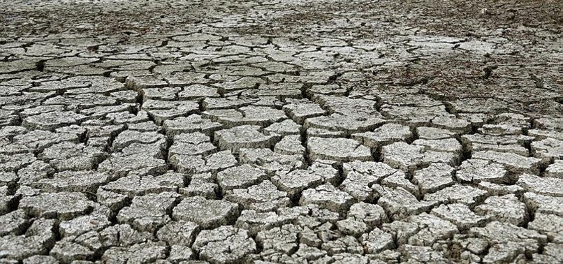 WORLD MARKS DAY TO COMBAT DESERTIFICATION, DROUGHT