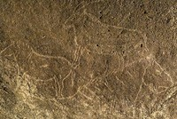 14,500-year-old cave paintings found in northern Spain