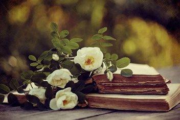 Sezai Karakoçun sevda yüklü şiiri ve ardındaki sır perdesi