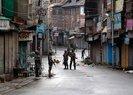 Amnesty calls on India to immediately halt Kashmir raids