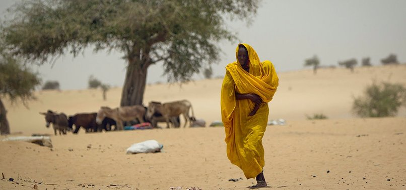 CENTRAL SAHEL COUNTRIES NEED IMMEDIATE FOOD AID: UN
