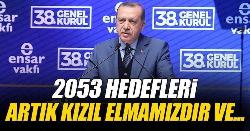 Cumhurbaşkanı Erdoğan: 2053 kızıl elmamız her şeyiyle size emanet