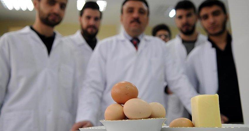 Yumurtayla besin değeri zenginleştirilmiş peynir üretildi