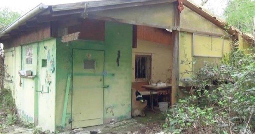 Terk edilmiş evde çürümüş ceset bulundu