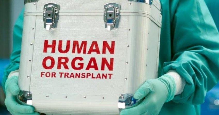 Herkes organ bağışçısı oluyor