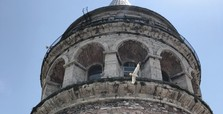 Hungry seagull becomes a regular at Galata Tower