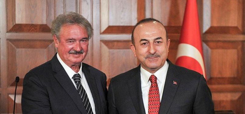 TURKEY, LUXEMBOURG HAVE NO POLITICAL PROBLEMS