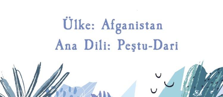 Ülkelerin ana dilleri