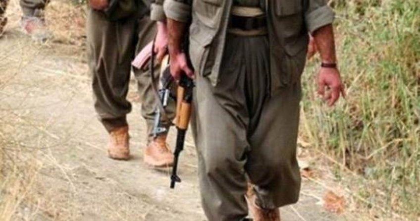 Mardin'de biri kadın 2 terörist yakalandı
