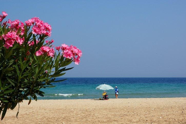 Kuşadası: En topp feriested med klar sjø og vakker natur