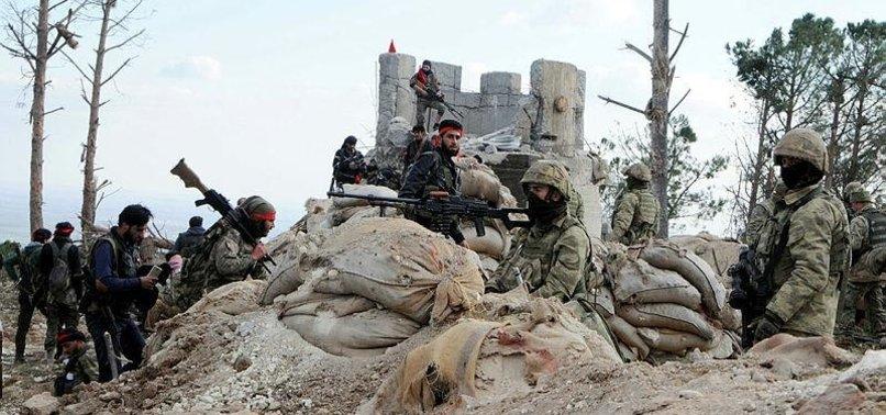 TURKISH FORCES, FSA FORTIFY SYRIAS MOUNT BURSAYA