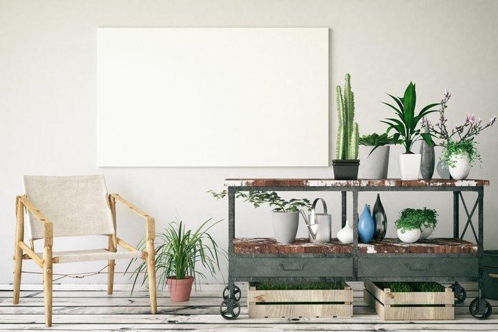 Ofisinizde büyütebileceğiniz en ideal 8 bitki çeşidi