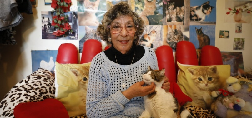 71-YEAR-OLD TURKISH WOMAN DEDICATES HER LIFE TO SAVING CATS