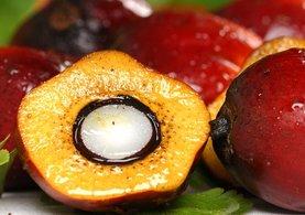 Yediğimiz bir çok yiyecek de bulunan Palm yağı nedir? - Hangi yiyeceklerde bulunur? Palm yağı kanserojen mi içeriyor?