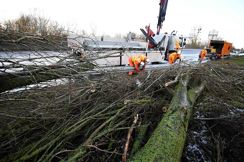 Workers repair a safety barrier after the fall of a tree in Avranches, on Jan. 13, 2017, after a storm hit parts of the country overnight. (AFP Photo)