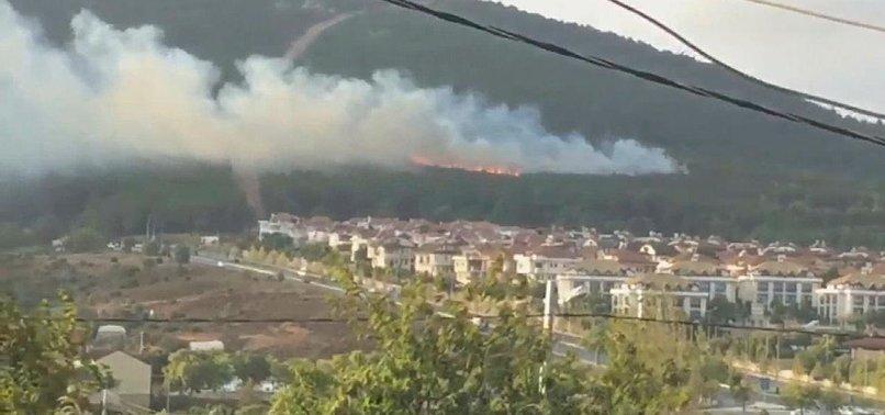 PENDIK FOREST FIRE IN ISTANBUL TERROR-RELATED: MINISTER PAKDEMIRLI
