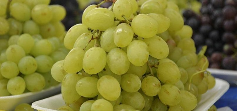 TURKEYS GRAPE EXPORTS UP MORE THAN 85 PCT IN 2017