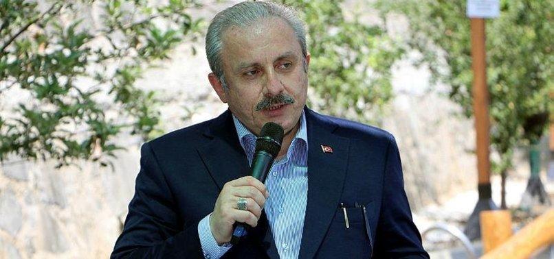 PARLIAMENT SPEAKER ŞENTOP SAYS TURKEY AIMS TO ESTABLISH PEACE IN AFGHANISTAN