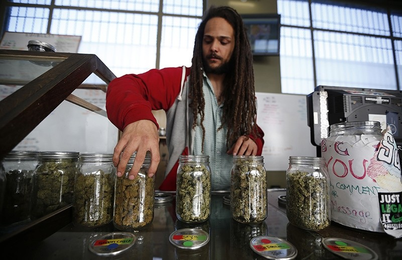 Volunteer Charlie Kirchheimer, 25, displays jars of dried cannabis buds at the La Brea Collective medical marijuana dispensary in Los Angeles, California, March 18, 2014 (Reuters Photo)