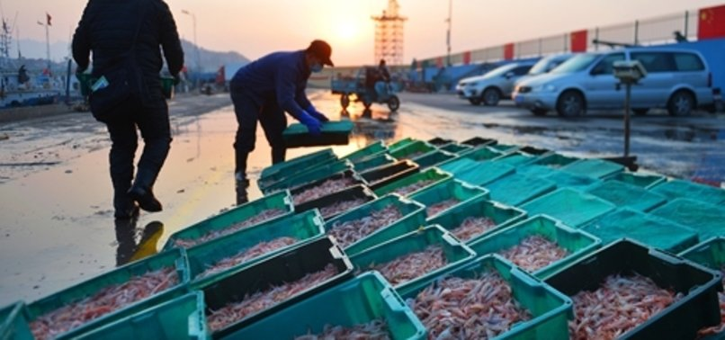CHINA SUSPENDS IMPORTS FROM ECUADORIAN COMPANY AFTER CORONAVIRUS FOUND ON SEAFOOD PACKAGING