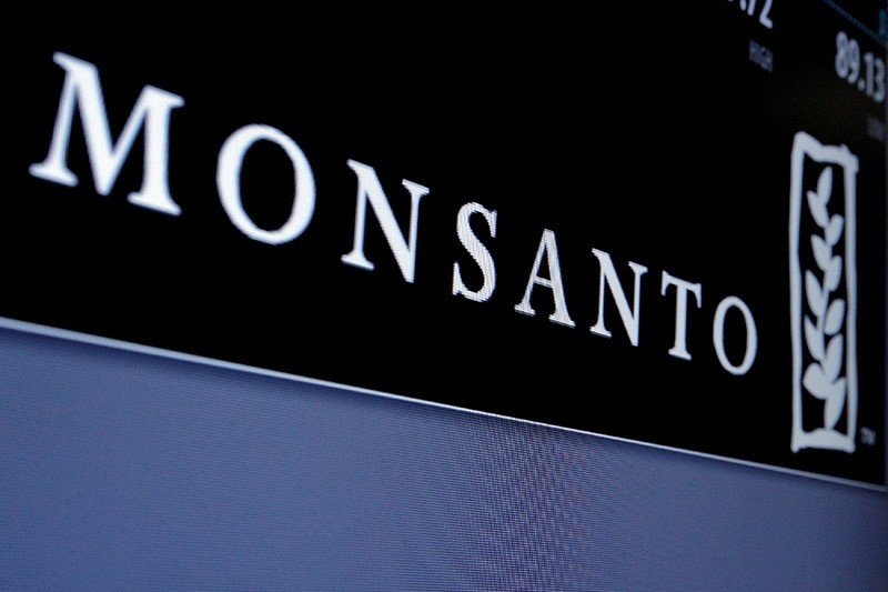 Monsanto logo is displayed on a screen where the stock is traded on the floor of the New York Stock Exchange (NYSE) in New York City, U.S. on May 9, 2016. (Reuters Photo)