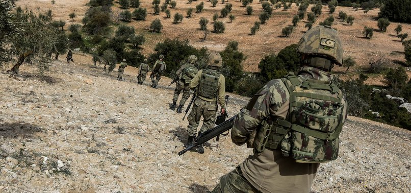 5 PKK TERRORISTS SURRENDER TO TURKISH SECURITY FORCES