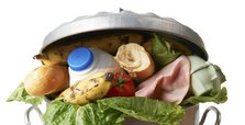 Nearly 60 pct of food produced in Canada wasted: report
