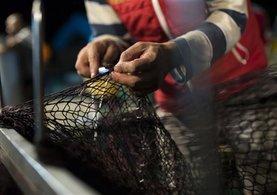 Balıkçılar bir kaç gün geçikmeli denize açılacak