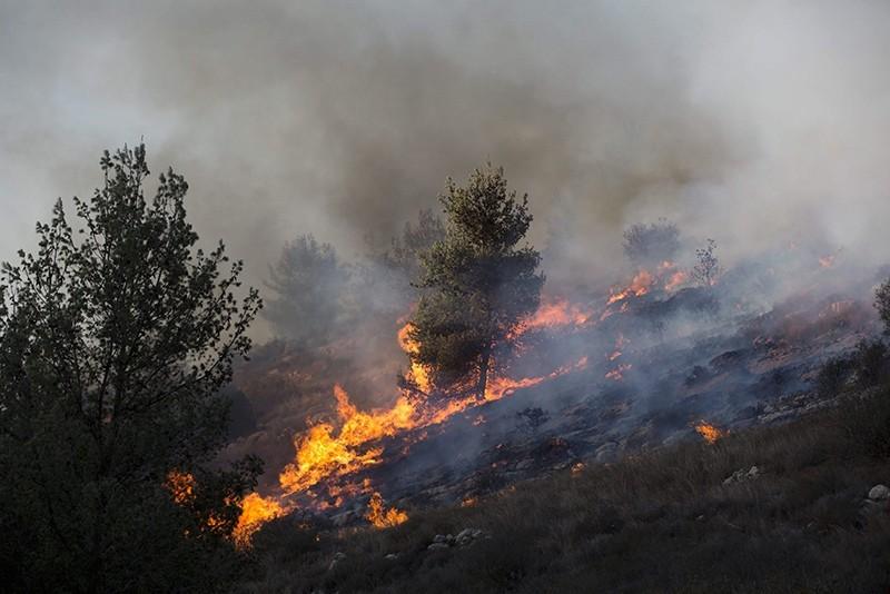 A forest fire in Nataf near Jerusalem, Israel, 23 November 2016. (EPA Photo)