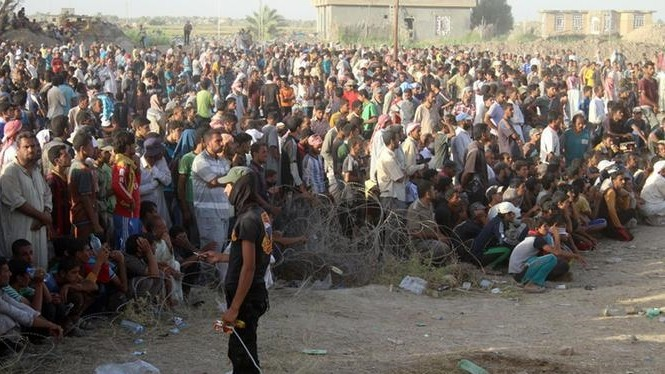 Displaced Iraqis from the city of Fallujah rest at a safe zone.