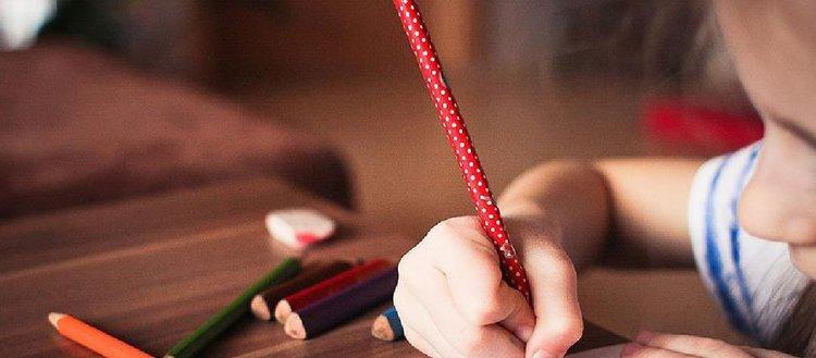 Darüşşafaka Eğitim Kurumlarına giriş sınavına başvurular başladı