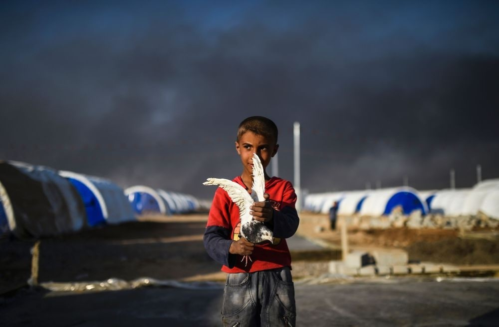 A displaced young Iraqi boy holding a pigeon at a refugee camp on Oct. 22, 2016 in the town of Qayyarah, south of Mosul, as an operation to liberate the city from Daesh takes place.