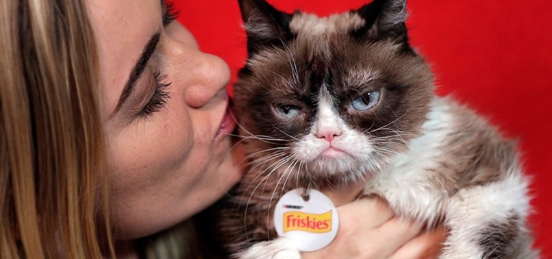 GRUMPY CAT WINS MORE THAN $700,000 IN COPYRIGHT CASE