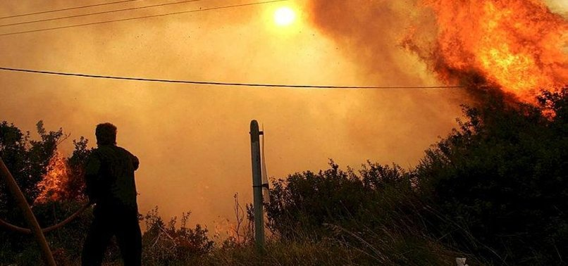 WILDFIRE RAGES ON GREEK ISLAND OF EVIA, VILLAGES EVACUATED