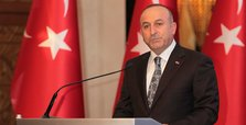 Turkish FM Çavuşoğlu calls on Kurds to abandon referendum