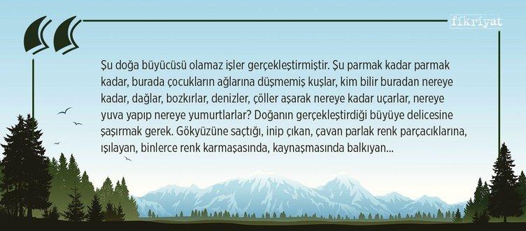 Kuşlar da göçüp gitti, Yaşar Kemal